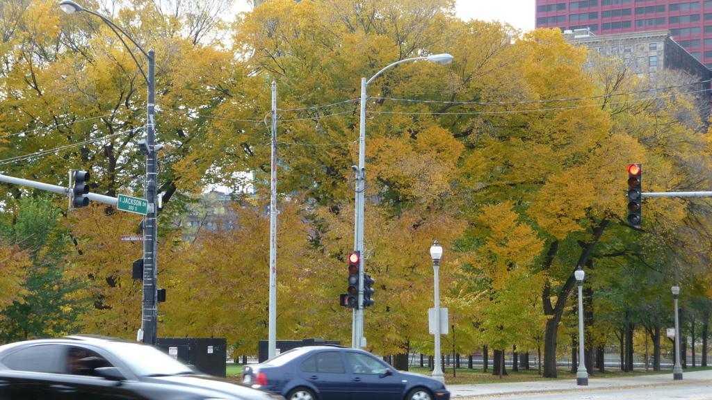 October - Chicago:P1080472.JPG