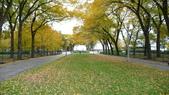 October - Chicago:P1080482.JPG