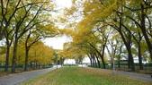 October - Chicago:P1080481.JPG