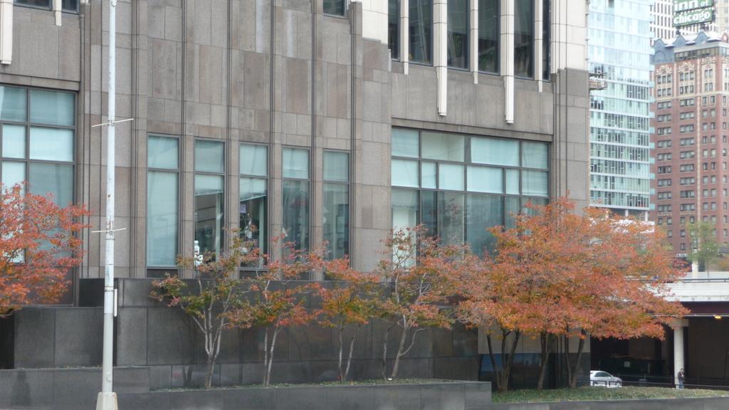 October - Chicago:P1080422.JPG