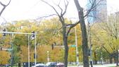 October - Chicago:P1080469.JPG