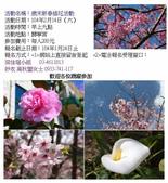 功德會慈善活動:104-02-14歲末新春插花活動.jpg