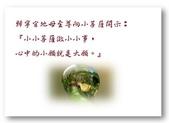 徵文相片:小菩薩成大願.jpg