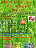 公告與海報類:107擲爐主海報照片.png