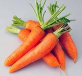 徵文相片:紅蘿蔔.jpg