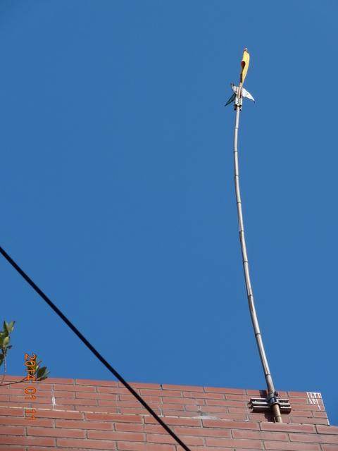 103/01/11安大地母令旗:DSC06180.JPG