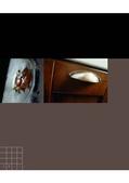 義大利精湛完美的工藝技術與極致美感的設計3:panera_頁面_08.jpg