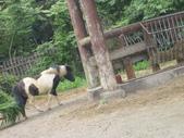 ☆→木柵Zoo←★:1943924504.jpg