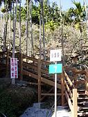 賞梅趣:P1120294.JPG