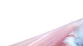 11-03-11~12 南投地區公路客運及車站之行:P1080626.JPG