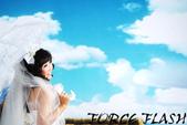 FORCE攝影器材-手繪油畫背景布:1124843804.jpg