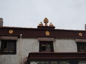 20120912西藏之旅:DSCN0125札基寺.JPG