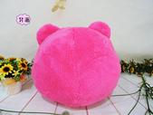 p相本:12吋熊抱哥圓球保暖枕2.JPG
