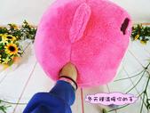 p相本:12吋熊抱哥圓球保暖枕4.JPG