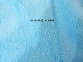 p相本:12吋波力小毛毯8.JPG