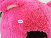 p相本:12吋熊抱哥圓球保暖枕5.JPG