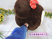 p相本:12吋米奇米妮圓球保暖枕7.JPG