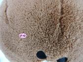 p相本:12吋LINE圓球保暖枕7.JPG