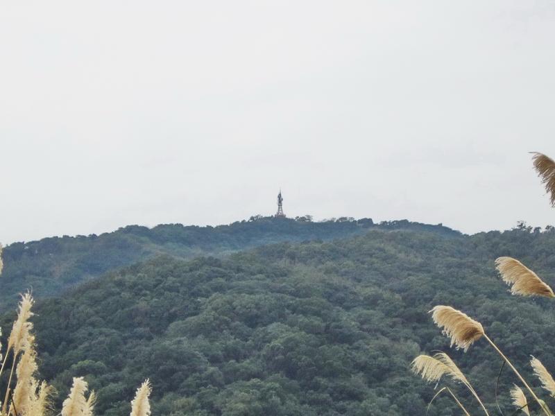 19-遠眺大棟山.JPG - 大同山