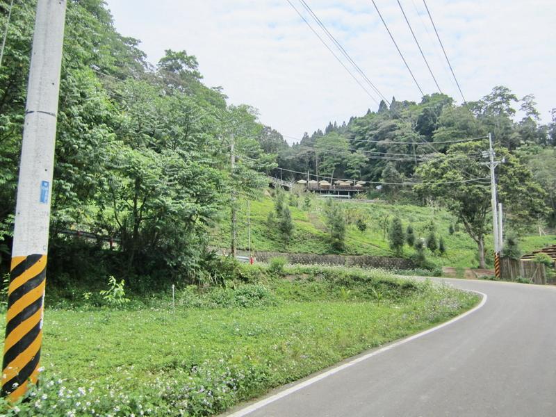 17-逃學步道咖啡.JPG - 大山北月