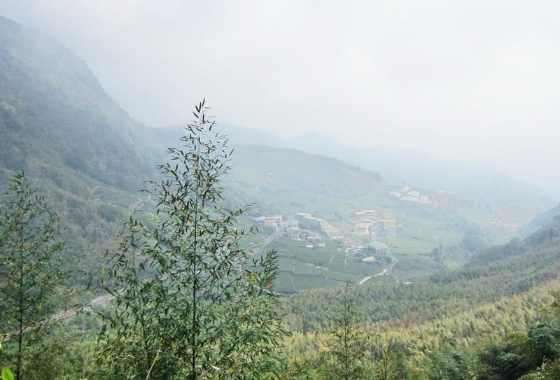 13-遠眺太和村.JPG - 奮起湖環騎(二)