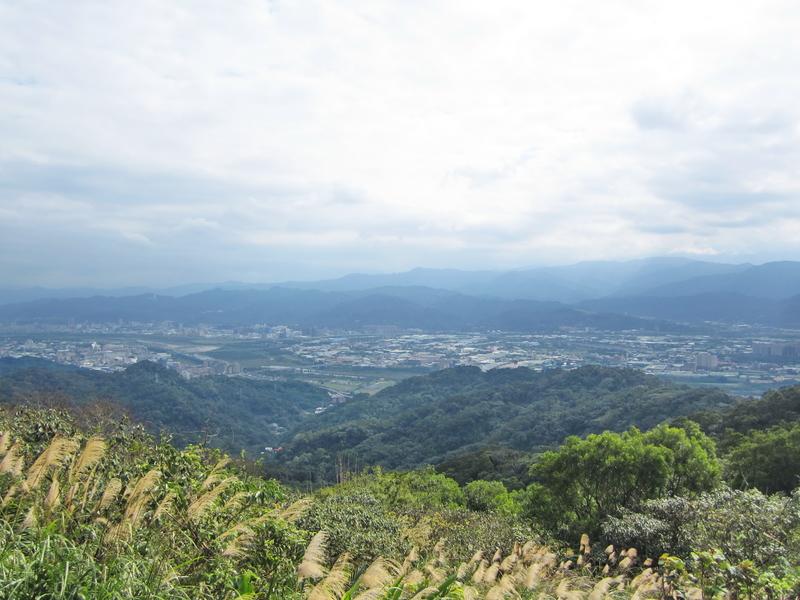 17-遠眺三鶯地區.JPG - 大凍山單騎