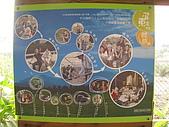20091227 花堤乳香&薰之園:薰之園