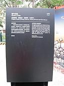 20091224 2009高雄國際貨櫃藝術節&雪世界:國際貨櫃藝術節-5