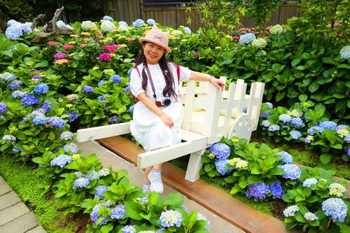 61.JPG - 初夏花語~滿懷希望,滿心歡喜。繡球花