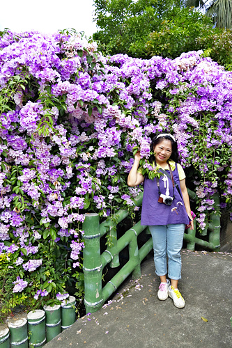 13_meitu_20.jpg - 👒十月。好。浪漫~紫色花瀑《蒜香藤》