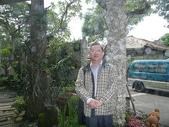 961104楊梅龍潭大溪一日遊:P1020101.JPG