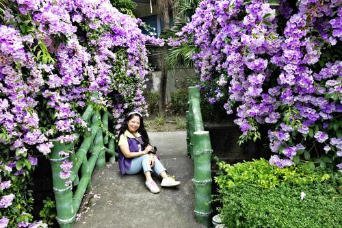 11_meitu_18.jpg - 👒十月。好。浪漫~紫色花瀑《蒜香藤》