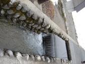 童話般的日本合掌村:逆流而上的魚