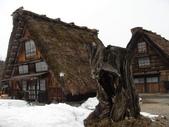 童話般的日本合掌村:居家