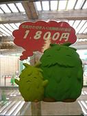 日本愛知博覽會~趕市集嚕:最會搶錢的吉祥物