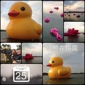 行動相簿:2013-10-26 014231.JPG