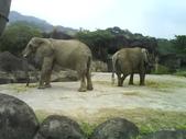 090526_901動物園跑跑:1496756402.jpg
