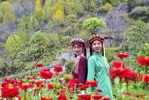 藏族美女:DSC_3028.jpg