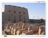 2010.06埃及紅海十日:1802870742.jpg