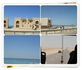 2010.06埃及紅海十日:1802870720.jpg