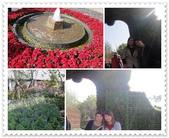 2010.12台北花博:1212923777.jpg