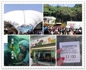 2010.12台北花博:1212923778.jpg