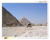 2010.06埃及紅海十日:1802876025.jpg