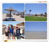 2010.06埃及紅海十日:1802870725.jpg