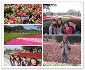 2010.12台北花博:1212923782.jpg