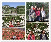 2010.12台北花博:1212923784.jpg