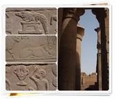 2010.06埃及紅海十日:1802870779.jpg
