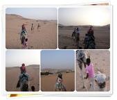 2010.06埃及紅海十日:1802875990.jpg