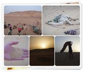 2010.06埃及紅海十日:1802875991.jpg