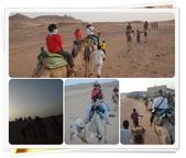 2010.06埃及紅海十日:1802875993.jpg